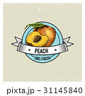 Peach Vintage, hand drawn fresh fruits background 31145840