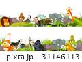 野生動物 動物 ぞうのイラスト 31146113