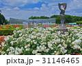 神代植物公園春のバラフェスタ 31146465