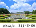 神代植物公園の噴水 31146469