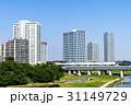 橋 電車 川の写真 31149729
