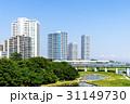 橋 電車 川の写真 31149730