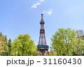 札幌テレビ塔 テレビ塔 大通公園の写真 31160430