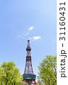 札幌テレビ塔 テレビ塔 大通公園の写真 31160431