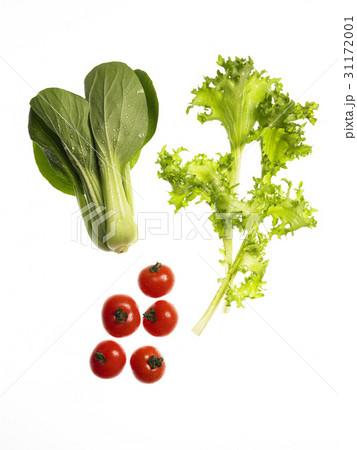ミニトマト 野菜 チンゲン菜 31172001
