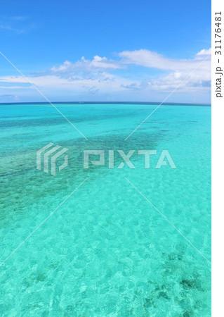 沖縄 青空とエメラルドグリーンの海 31176481
