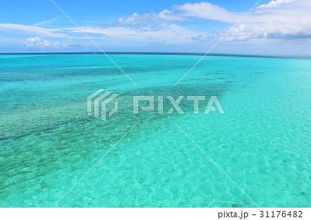 沖縄 青空とエメラルドグリーンの海 31176482