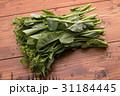 菜の花 (折り菜) 31184445