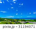 沖縄県 沖縄 夏の写真 31194071