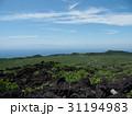 伊豆大島 カルデラ 火山の写真 31194983