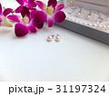 真珠のイヤリング 31197324