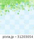 新緑 青もみじ 葉のイラスト 31203054