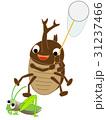カブトムシの昆虫採集 31237466