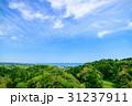 一宮町 風景 千葉県の写真 31237911