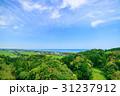 一宮町 風景 千葉県の写真 31237912
