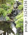 水の流れ 31241536