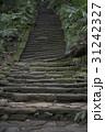 苔 階段 石段の写真 31242327