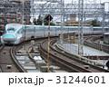 東北新幹線 はやぶさ 新幹線の写真 31244601
