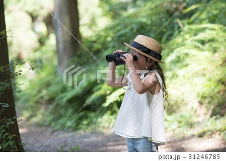 双眼鏡を覗く女の子 31246785