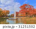 代々木公園 噴水池 紅葉の写真 31251502