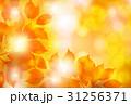 紅葉 もみじ 秋のイラスト 31256371