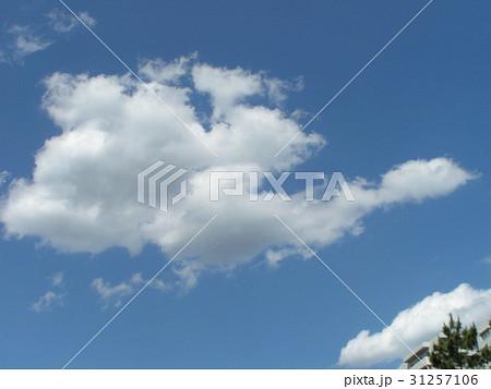 夏の白い雲と青い空 31257106