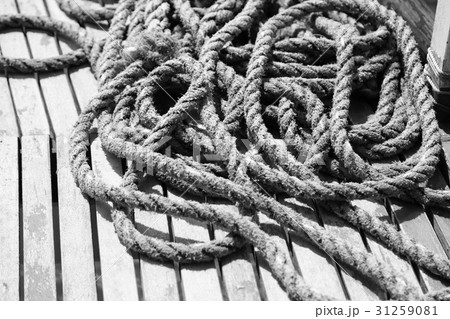 a rope in  yacht accessory  boatの写真素材 [31259081] - PIXTA