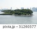 お台場 鳥の島 31260377