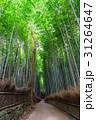 京都 嵯峨野 竹林の道の写真 31264647