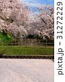 弘前城桜まつり_2017 31272229