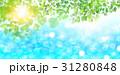 海 夏 葉のイラスト 31280848