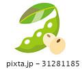 枝豆イラスト 31281185