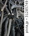 材木 背景素材 縦位置 31285749