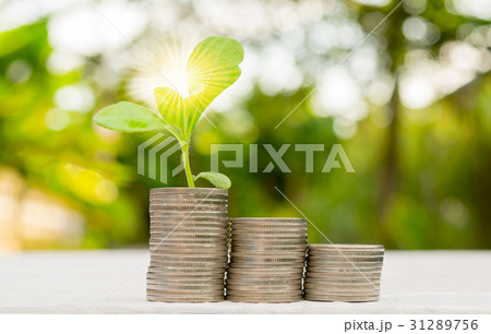 Interest money finance Plant Growing In Savingsの写真素材 [31289756] - PIXTA