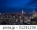 エンパイアステートビル ニューヨーク 夜景の写真 31291236