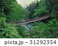 新緑の秋川渓谷 31292354