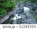 新緑の秋川渓谷 31292355