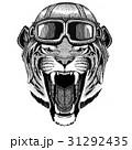 ワイルド 野生 手描きののイラスト 31292435