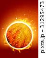 恒星 31295473