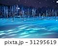 美瑛 雪景色 青い池の写真 31295619