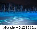 美瑛 雪景色 青い池の写真 31295621
