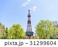 札幌テレビ塔 さっぽろテレビ塔 北海道の写真 31299604
