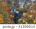 鳴子峡 紅葉 秋の写真 31300014