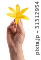 yellow lily flower in a female hand 31312954