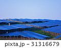 ソーラーパネル エネルギー 31316679