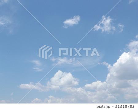 谷津干潟公園の青い空と白い雲 31318782