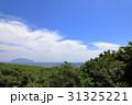 風景 自然 三宅島の写真 31325221