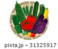夏野菜 31325917