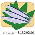 竹ざる(四角型)にサンマ、笹 31329280