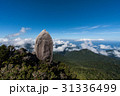 屋久島の巨石 31336499